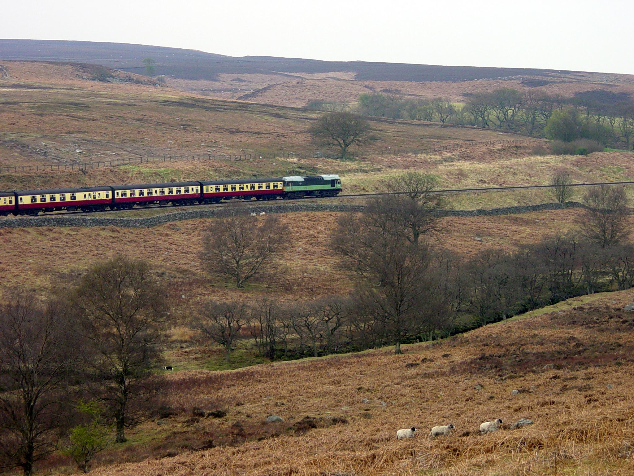 NYMR_diesel_train1